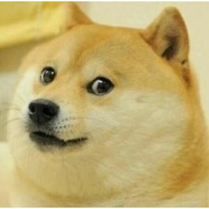 Test Doge