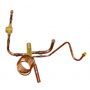 Expansion valve cpl 1011-